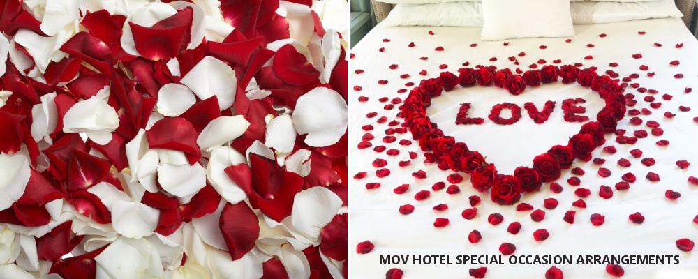 MOV Special Arrangments